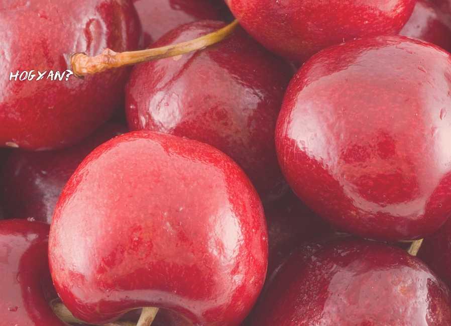 fanyar cseresznye kivonat fogyás